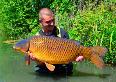 37lb10oz-common-early-May-19-copy